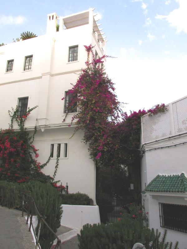 <p>Depuis la terrasse du caf&eacute; Baba, nous pouvons apercevoir la maison de Barbara Hutton, qui fut l&#39;une des femmes les plus riches du&nbsp; monde, dit&laquo; La pauvre petite fille riche &raquo;. On la surnommait ainsi &agrave; cause des malheurs qu&rsquo;elle d&ucirc; surmonter.<br /><br />Barbara acheta le palais de Sidi Hosni dans la m&eacute;dina de Tanger, o&ugrave; elle organisa de nombreuses f&ecirc;tes excentriques. Elle dilapidait sa fortune qu&rsquo;elle avait h&eacute;rit&eacute;e de son grand-p&egrave;re, le propri&eacute;taire des grands magasins Woolworth. La l&eacute;gende dit qu&rsquo;elle avait fait &eacute;largir les ruelles de la m&eacute;dina pour pouvoir se d&eacute;placer jusqu&rsquo;&agrave; chez elle en Rolls Royce.</p>