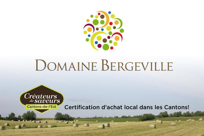 <p>Le Domaine Bergeville, implant&eacute; pr&egrave;s de North Hatley depuis 2008, est l&rsquo;unique vignoble au Qu&eacute;bec &agrave; se consacrer exclusivement au vin mousseux, et l&rsquo;un des rares &agrave; &ecirc;tre certifi&eacute; biologique, biodynamique et Vin du Qu&eacute;bec.</p>
