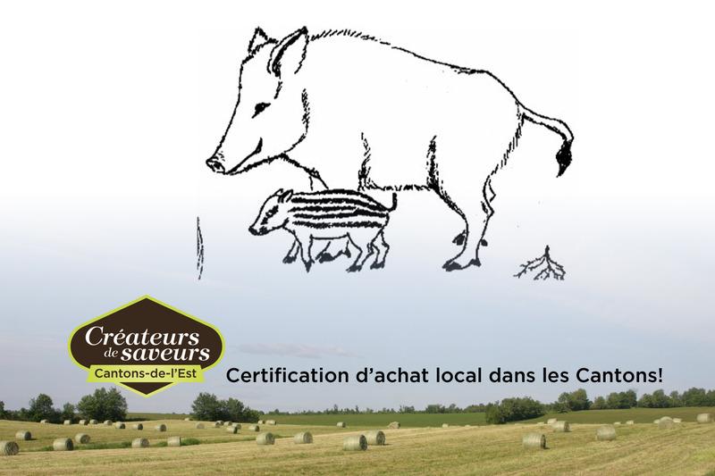 <p>La ferme lait sangliers des bois est situ&eacute;e sur une terre ancestrale de Saint-Camille depuis 1871 ou l&rsquo;agriculture est pr&eacute;sente d&egrave;s le d&eacute;but.</p>