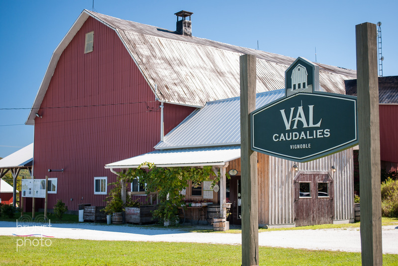 <p>Val Caudalies, vignoble et cidrerie<br />4921, rue Principale<br />Dunham, QC<br />J0E 1M0<br />450 295-2333<br /><a href='http://www.valcaudalies.com'>www.valcaudalies.com</a></p>