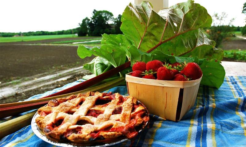 <p>Tarte fraises et rhubarbe</p>