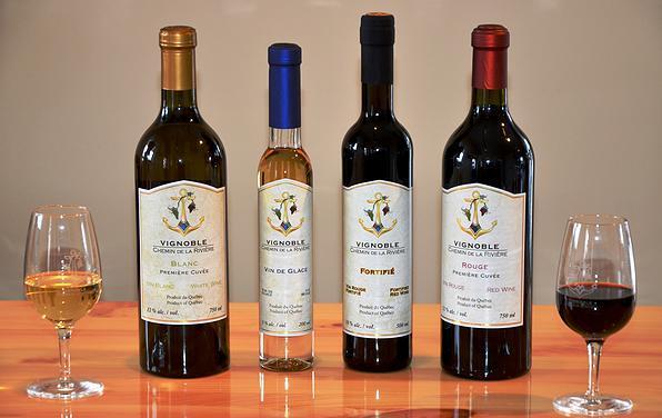 <p>La famille des vins</p>