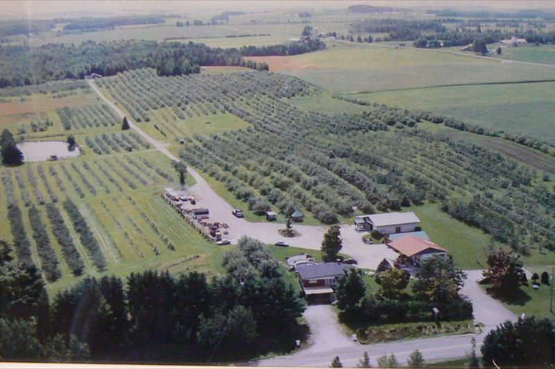 <p>Cidrerie Verger Ferland<br />380, chemin de la Station<br />Compton, QC<br />J0B 1L0<br />819 835-5762<br /><a href='http://www.vergerferland.com'>www.vergerferland.com</a></p>