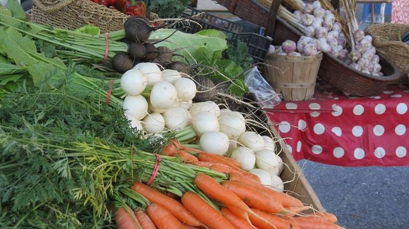 <p>Venez go&ucirc;ter &agrave; une grande vari&eacute;t&eacute; de produits frais!</p>