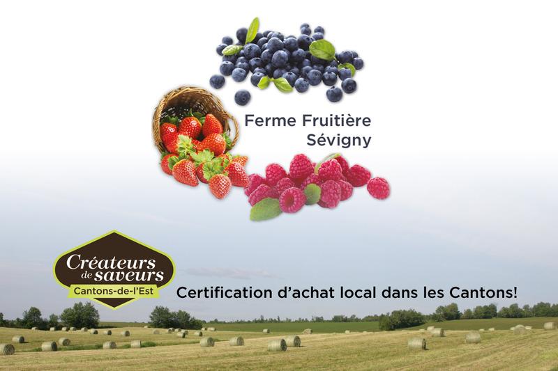 <p>&Agrave; la Ferme Fruiti&egrave;re S&eacute;vigny, nous cultivons cinq acres de fraises, cinq acres de framboises, cinq acres de bleuets et 1/8e d&rsquo;acre de groseilles.</p>