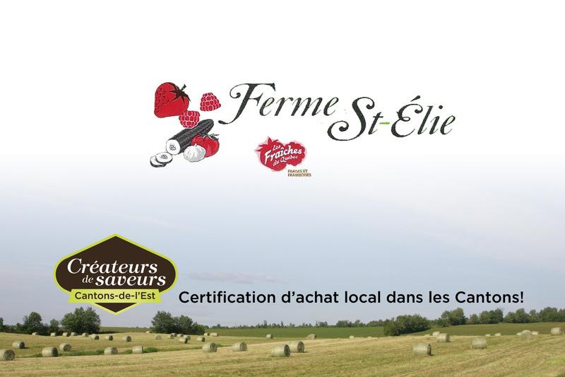 <p>Nous vous offrons une vari&eacute;t&eacute; de fruits et l&eacute;gumes cultiv&eacute;s avec un minimum de pesticides.</p>