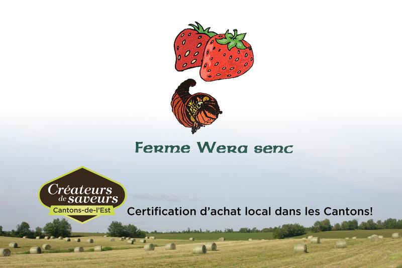 <p>La Ferme Wera a introduit le concept de l&rsquo;autocueillette de fraises d&egrave;s le milieu des ann&eacute;es 1960.</p>