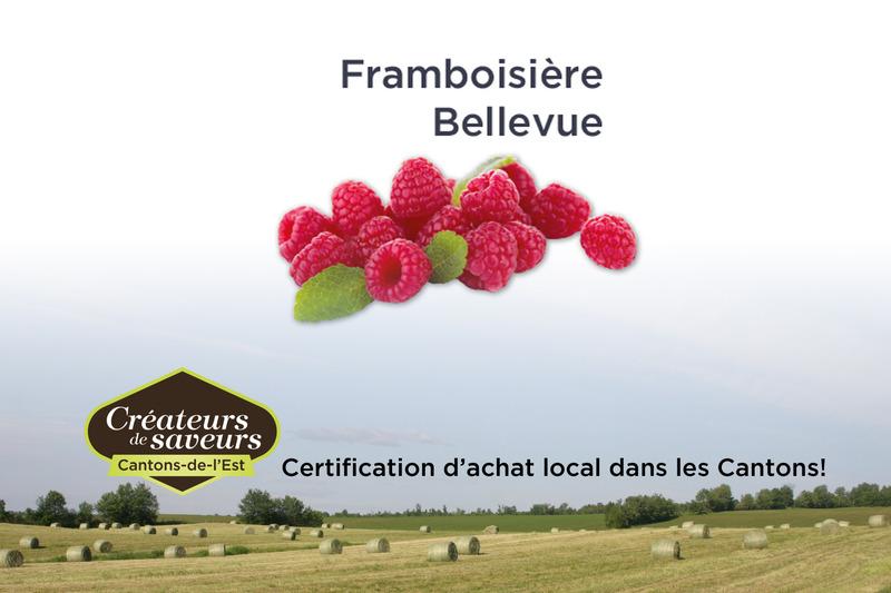 <p>La Framboisi&egrave;re Bellevue se sp&eacute;cialise dans la production de framboises depuis maintenant 34 ans.</p>