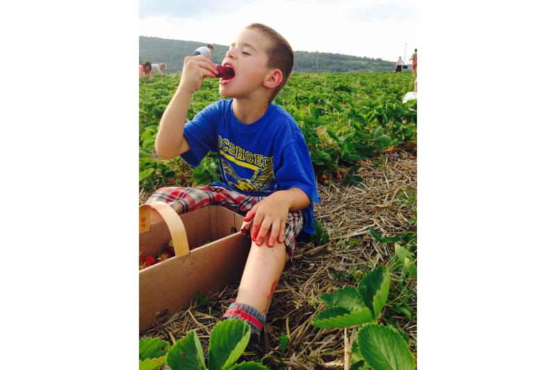 <p>Les r&eacute;coltes sont vendues sur place, &agrave; la ferme, et en autocueillette pour les fraise, les framboises, les bleuets et les m&ucirc;res.</p>