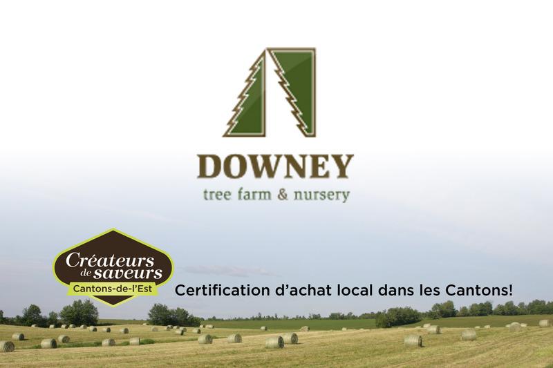 <p>La Sapini&egrave;re Downey est une entreprise familiale qui trouve sa fiert&eacute; dans la production d&rsquo;excellents arbres de no&euml;l.</p>