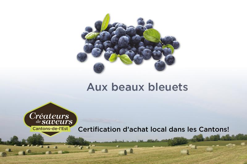 La ferme Aux beaux bleuets offre à sa clientèle des bleuets en autocueillette et au kiosque sur place.