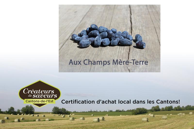 Aux Champs Mère-Terre vous offre deux petits fruits en autocueillette soient l'aronia et la camerise. Au kiosque procurez-vous les frais ou congelés.