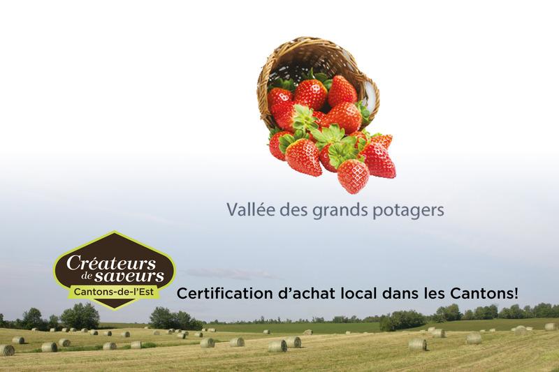 La Vallée des grands potagers offre à sa clientèle des fraises en autocueillette et au kiosque sur place.