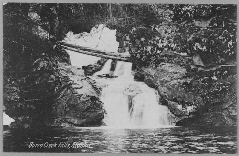 <p>Joseph Beauchamp est arriv&eacute; &agrave; Skagway &agrave; l&rsquo;&eacute;poque de la Ru&eacute;e vers l&rsquo;or; il y a v&eacute;cu quelques ann&eacute;es avant de s&rsquo;installer &agrave; Bear Creek avec son &eacute;pouse Blanche.<br /><br />Le 8 f&eacute;vrier 1913, Blanche a donn&eacute; naissance &agrave; un petit gar&ccedil;on pr&eacute;matur&eacute; qui n&rsquo;a v&eacute;cu que quelques heures. Joseph pensait enterrer leur fils &agrave; Whitehorse d&egrave;s que Blanche serait r&eacute;tablie; or, elle a subi des complications des suites de l&rsquo;accouchement. Comme ils vivaient &agrave; 30 kilom&egrave;tres du voisin le plus pr&egrave;s, Joseph n&rsquo;a pas abandonn&eacute; son &eacute;pouse pour aller chercher de l&rsquo;aide. Elle est morte quelques jours plus tard &agrave; 40 ans.<br /><br />Joseph s&rsquo;est rendu &agrave; Whitehorse avec les deux corps; il a plac&eacute; l&rsquo;enfant dans les bras de Blanche dans le cercueil et les a enterr&eacute;s au Cimeti&egrave;re des pionniers.<br />En 1920, Joseph est retourn&eacute; &agrave; Skagway o&ugrave; il a v&eacute;cu jusqu&rsquo;&agrave; sa mort en 1935. Il &eacute;tait bien connu des locaux qui l&rsquo;appelaient &laquo; Burro Creek Joe &raquo;, du nom du ruisseau au bord duquel il vivait en ermite. Il y recevait chaleureusement les visiteurs, avec un anglais toujours teint&eacute; de son bel accent franco-canadien.<br /><br />Photo : Carte postale de la cascade sur le ruisseau Burro o&ugrave; a v&eacute;cu Joseph Beauchamp.<br />Cr&eacute;dit photo : Library of Congress Prints and Photographs Division Washington, D.C. 20540</p>