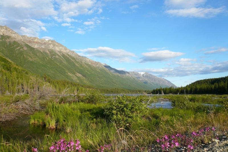 M&ecirc;me si vous n&rsquo;allez pas pratiquer la randonn&eacute;e, la route d&rsquo;Annie Lake offre des paysages magnifiques.<br /><br />Cr&eacute;dit photo : St&eacute;phanie Chevalier