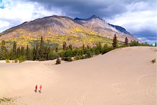 Le d&eacute;sert de Carcross est commun&eacute;ment appel&eacute; &laquo; le plus petit d&eacute;sert du monde &raquo;, mais en fait il s&rsquo;agit d&rsquo;une s&eacute;rie de dunes. Le climat de la r&eacute;gion se r&eacute;v&egrave;le trop humide pour &ecirc;tre consid&eacute;r&eacute; comme un v&eacute;ritable d&eacute;sert.<br /><br />Le sable s&rsquo;y est d&eacute;pos&eacute; &agrave; la fin de l&rsquo;&egrave;re glaciaire lorsque les lacs se sont form&eacute;s et ont d&eacute;pos&eacute; des s&eacute;diments; les dunes sont rest&eacute;es lorsque les lacs ont s&eacute;ch&eacute;. Aujourd&rsquo;hui encore, le sable est port&eacute; par le vent en provenance du lac Bennett.<br /><br />Photo : Marcheurs dans le d&eacute;sert de Carcross<br />Cr&eacute;dit photo : Tourisme Yukon