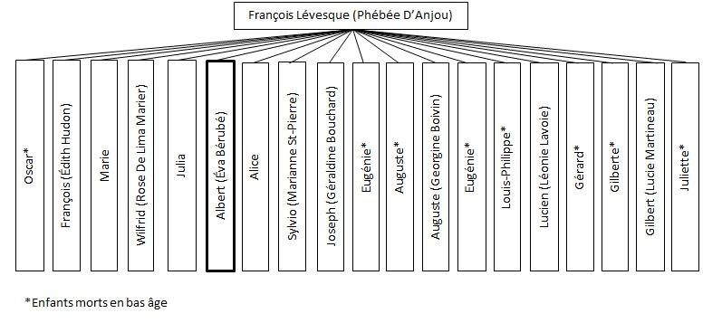 <p>L&#39;arbre g&eacute;n&eacute;alogique complet de la famille L&eacute;vesque</p>