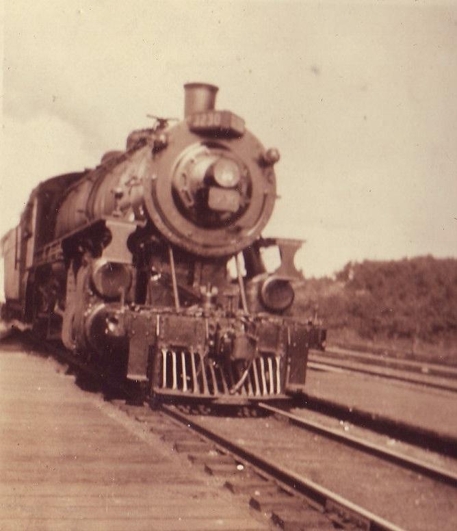 <p>Le train arrive &agrave; Arundel en 1897 et facilite bien s&ucirc;r le d&eacute;veloppement de ce petit village issu de la rencontre entre la colonisation anglaise et fran&ccedil;aise. C&#39;est le 27 mai 1962 que ferma la voie ferr&eacute;e, mettant fin &agrave; 66 ann&eacute;es de service ferroviaire &agrave; Arundel.</p>