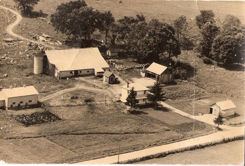 <p>En roulant le long de la route 323, vous croiserez 4 fermes encore en activit&eacute;, dont une depuis 1905. Parmi ces quatre fermes, nous en&nbsp;avons une ferme boivine, une ferme laiti&egrave;re, une ferme apicole et une ferme bovine et avicole. Cette photo de la ferme Picardier date de 1950. C&#39;est en 1929 que Aur&egrave;le Gauthier et L&eacute;onie V&eacute;zeau ont achet&eacute; cette terre de 100 acres, dont 60 cultivables.</p>