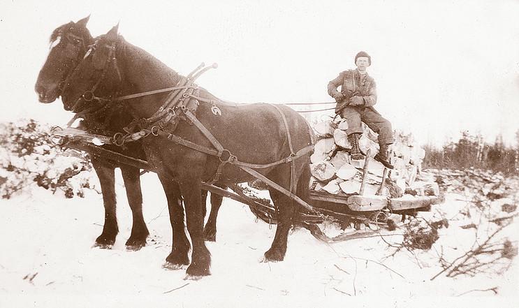 <p>Transport du bois.<br />Source: Aline St-Amour.</p>