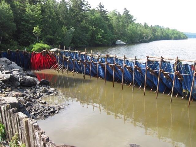 <p>En 2013, un nouveau barrage a &eacute;t&eacute; construit en aval du Lac Fortin. En effet, le bassin d&#39;eau du Lac Fortin fournit en grande majorit&eacute; la r&eacute;serve d&#39;eau potable qui dessert la Ville de Beauceville.&nbsp;</p>
