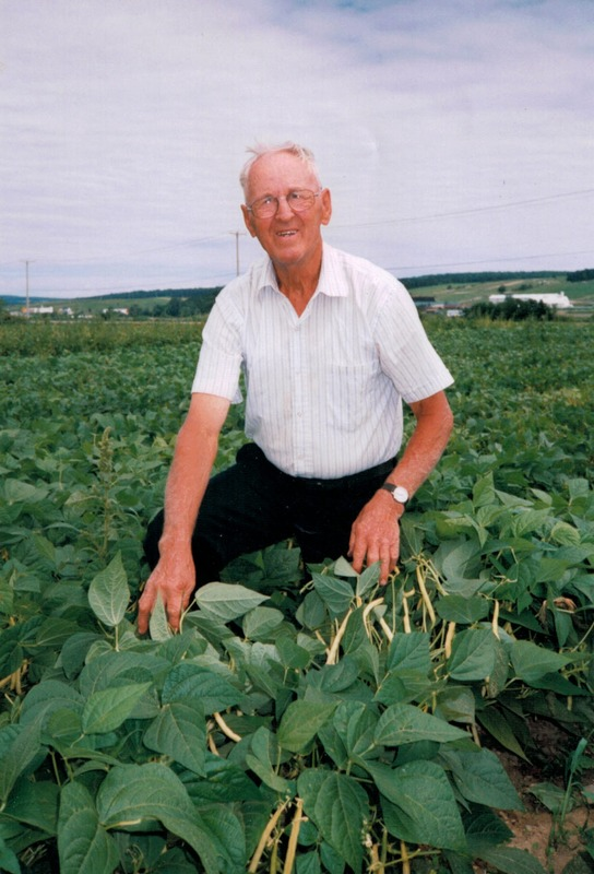 <p>Monsieur Arthur Huard pose fi&egrave;rement avec les plants de haricots jaunes.<br /><br />Source: Jardinier Huard</p>