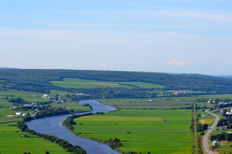 <p>Longue de 185 kilom&egrave;tres, la Chaudi&egrave;re prend sa source dans le lac M&eacute;gantic, dans la r&eacute;gion de l&#39;Estrie, dans le sud-est du Qu&eacute;bec, et coule vers le nord pour rejoindre le fleuve Saint-Laurent &agrave; L&eacute;vis, sur la rive sud de Qu&eacute;bec. C&#39;est un des cours d&#39;eau les plus &eacute;tendu du Qu&eacute;bec.<br /><br />Source: Wikipedia</p>