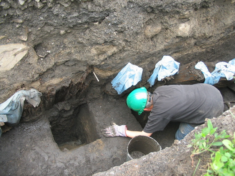 While excavating, archaeologists discover the palisade remains in the soil. Excellently preserved wooden stakes were found perfectly aligned and tightly pressed against each other.