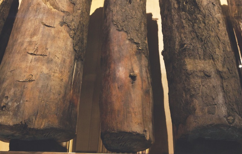 Ces pieux de la palissade originale - construite autour de 1689 - ont été découverts en 1975. Il s'agit de frêne noir, de cèdre et de pin.