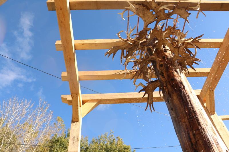 <p>Ce sont les panaches r&eacute;colt&eacute;s lors de la tomb&eacute;e au fil des ann&eacute;es qui forment les branches de l&rsquo;arbre en son centre. L&rsquo;eau qui coule imite la pluie.</p>