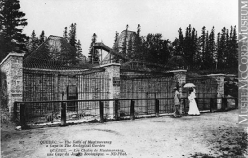 Le premier jardin zoologique du Qu&eacute;bec fut am&eacute;nag&eacute; par la compagnie Holt Renfrew, en 1907, sur les terrains de la maison Montmorency, jusqu&rsquo;en 1932. Certains plateaux sur le terrain sont toujours visibles, vestiges des cages et autres am&eacute;nagements pour les animaux. Cet emplacement fut rapidement associ&eacute; &agrave; la vill&eacute;giature gr&acirc;ce au jardin zoologique, au golf et &agrave; l&rsquo;&eacute;tablissement d&rsquo;h&ocirc;tels de prestige; o&ugrave; l&rsquo;aristocratie qu&eacute;b&eacute;coise et les touristes de l&rsquo;&eacute;poque se rencontraient. La construction de maisons d&rsquo;&eacute;t&eacute; &agrave; proximit&eacute; du fleuve Saint-Laurent et le long de la rivi&egrave;re Montmorency contribue &eacute;galement &agrave; cette association.<br /><br />Photo : Mus&eacute;e McCord