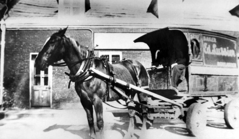 Les chevaux des véhicules de livraison connaissaient par cœur les endroits où ils devaient s'arrêter en cours de route.