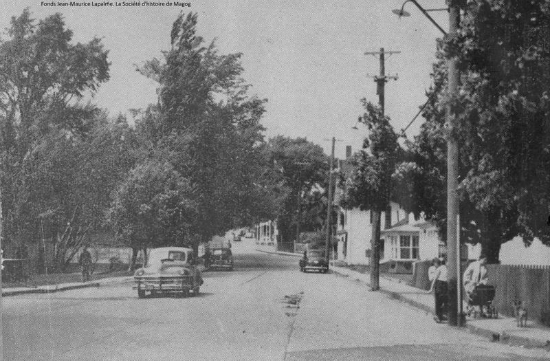 En route, prenez le temps et le plaisir de regarder les maisons, dont les styles vous sont d&eacute;sormais connus.<br /><br />&Ecirc;tes-vous capable de reconna&icirc;tre le style de la maison cubique du 170 rue Merry Nord et celui de la maison d&rsquo;inspiration Nouvelle-Angleterre du 189 rue Merry Nord.<br /><br />Plus loin, sur la rue John, voyez comme la maison &agrave; toit plat du 776 se distingue de la maison cubique que vous venez de voir.<br /><br />Prenez le temps d&rsquo;observer la maison vernaculaire &eacute;tats-unienne du 830, qui a &eacute;t&eacute; construite en 1899.&nbsp;