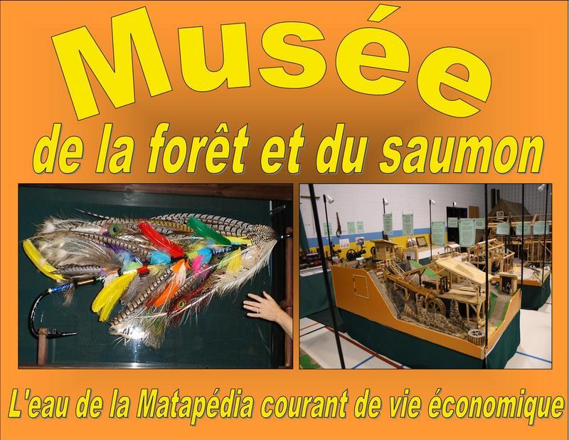 <p>Au 6, rue des Loisirs.<br /><br />Le Mus&eacute;e de la for&ecirc;t et du saumon vous propose une exposition qui traite de la drave, des moulins &agrave; scie et du monde du saumon.</p>