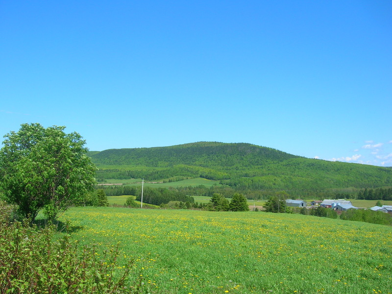 <p>Vue sur la montagne du rang 10. &Agrave; 11,2 km de Saint-No&euml;l.<br /><br />Cr&eacute;dit photo: Steve Ouellet, CLD de La Matap&eacute;dia.</p>