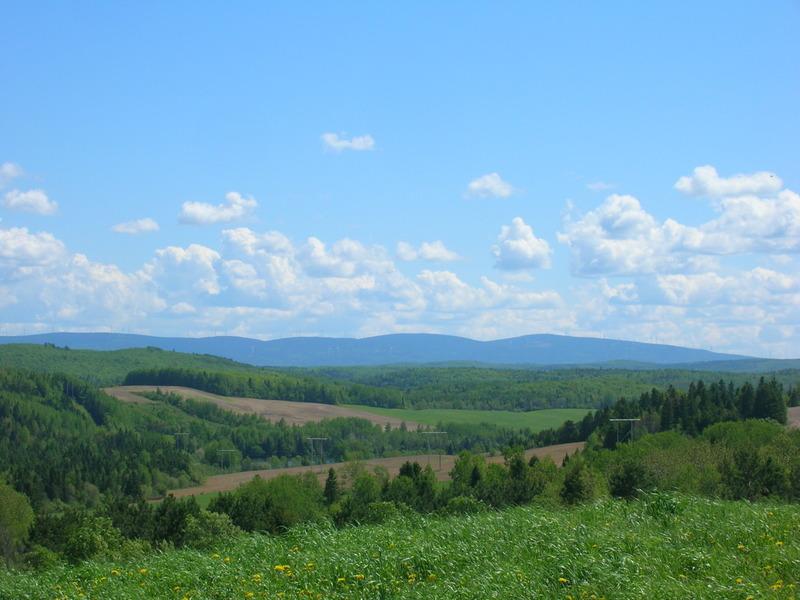 <p>Vue sur les Monts Notre-Dame. &Agrave; 11,2 km de Saint-No&euml;l.<br /><br />Cr&eacute;dit photo: Steve Ouellet, CLD de La Matap&eacute;dia.&nbsp;</p>