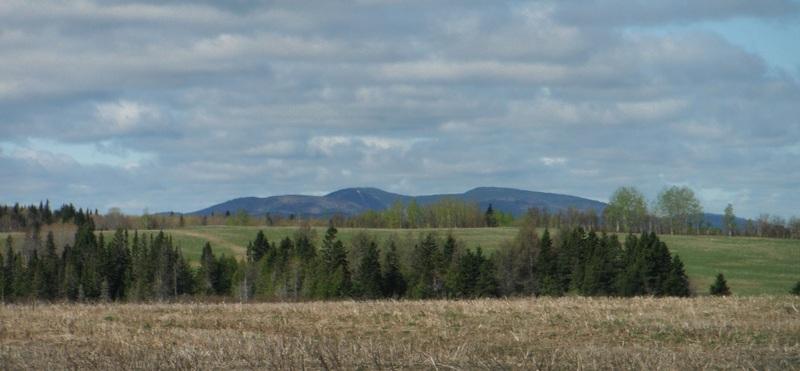 <p>Vue sur les Monts Notre-Dame &agrave; l&#39;ouest.<br /><br />&Agrave; 11 km d&#39;Amqui. &Agrave; 13,6 km de Saint-Vianney.</p>