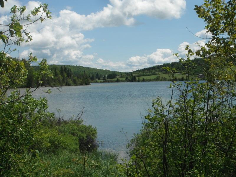 <p>Un des 17 lacs de Saint-Alexandre-des-Lacs.<br /><br />Stationnement sugg&eacute;r&eacute;: Chutes &agrave; Philom&egrave;ne.</p>