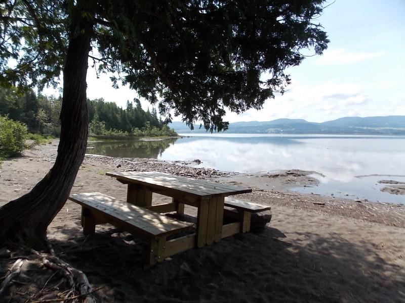 <p>Venez vous reposer ou prendre l&#39;air au Parc r&eacute;gional de la Seigneurie du Lac Matap&eacute;dia!<br /><br />Stationnements possibles &agrave; diff&eacute;rents endroits:<br />secteur Amqui &agrave; la Pointe-Fine, secteur Val-Brillant au D&eacute;p&ocirc;t &agrave; Soucy et &agrave; l&#39;Ancien Chalet &agrave; Soucy, secteur Sayabec &agrave; la Baie-de-Charlie.</p>