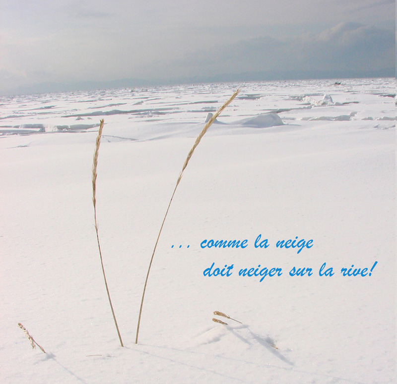 <p>... Oh, how the snow must be falling on the shore!<br /><br />&ldquo;The dream unfolds like a sigh trapped in ice; it lies somewhere between the white surface and the black depths: &ldquo;tous les &eacute;tangs gisent gel&eacute;s, mon &acirc;me est noire&rdquo;. In these lines, the link between the winter landscape and winter of the soul is stark.<br />The dream is triply bounded by snow, glass and pain... The glass of the window attracts the eye, inviting the gaze while creating a transparent barrier between indoors and outdoors.&rdquo; (Paul Wyczynski, &Eacute;crivains canadiens d&rsquo;aujourd&rsquo;hui, Fides 1967, p.58)<br /><br />Could it be that Nelligan, who was born on December 24, gazing from a frosted window overlooking the gloom of Montreal on his birthday morning, let his thoughts drift nostalgically to his adventures in Cacouna? There is little doubt. On certain frosty December evenings, isn&rsquo;t it his voice we hear, carried on the cold west wind, whispering these words: &ldquo;Oh, that winter should come and pass... This dark winter of the city... Oh, how winter must be white in the fields, and how the snow must be glittering under the frost and falling on the shore!&rdquo; (Yvan Roy Nelligan &agrave; Cacouna, p.182)<br /><br />Photo source : Yvan Roy, Cacouna beach, winter 2007<br />&nbsp;</p>