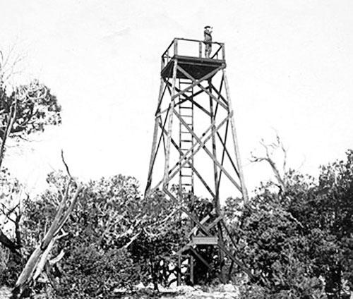 <p>D&egrave;s 1909, le Forest Service a construit un nid de pie au sommet d&#39;un arbre au Hopi Point pour guetter les feux de for&ecirc;t. Cette tour de guet en bois est apparemment la premi&egrave;re du genre en Arizona. En 1927, le service du Parc National l&#39;a remplac&eacute;e par une tour en acier de 12m, qui a &eacute;t&eacute; r&eacute;duite &agrave; 7m en 1953 lorsque le sommet a &eacute;t&eacute; reconstruit.<br /><br />En 1935, des &eacute;quipes de construction ont compl&eacute;t&eacute; la portion est du West Rim Drive en r&eacute;alignant d&#39;anciennes routes pour qu&#39;elles se rencontrent au Hopi Point avant de se rendre &agrave; Hermits Rest. C&#39;&eacute;tait la derni&egrave;re route importante &agrave; &ecirc;tre construite au Grand Canyon.<br /><br />Un garde-forestier surveille les moindres signes de fum&eacute;e au sommet de la tour de guet d&#39;origine au Hopi Point en 1909. Cr&eacute;dit: US Forest Service.</p>