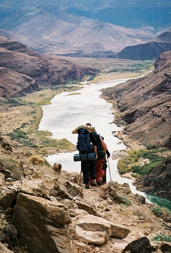 <p>Difficult&eacute;: 2.5 (interm&eacute;diaire)<br />Distance: 15,3 km aller seulement<br />Dur&eacute;e: 5h aller<br />&Eacute;l&eacute;vation: 165 m<br /><br />Histoire: Le Little Colorado rejoint le bras principal du fleuve Colorado au mile 61,5. Depuis le voyage d&#39;exploration de Powell en 1869, cette confluence a marqu&eacute; la fin de Marble Canyon et le d&eacute;but officiel du Grand Canyon. Le cadre est remarquable. Lorsqu&#39;il est immacul&eacute;, le Little Colorado a le m&ecirc;me couleur que le ciel. De larges &eacute;tendues de rochers verticaux atteignent 1219m jusqu&#39;au sommet. Le Grand Canyon est un endroit o&ugrave; l&#39;extraordinaire est habituel, mais m&ecirc;me l&agrave;-bas, le Beamer Trail jusqu&#39;&agrave; l&#39;entr&eacute;e du Little Colorado s&#39;av&egrave;re magnifique.<br /><br />Le Beamer Trail doit son nom &agrave; Ben Beamer, pionnier, fermier et mineur actif dans l&#39;est du Grand Canyon durant les ann&eacute;es 1890. Beamer a essay&eacute;, sans succ&egrave;s, de cultiver les terres et de vivre pr&egrave;s de l&#39;entr&eacute;e du Little Colorado.<br /><br />L&#39;entr&eacute;e de Palisades Creek offre une toile de fond pour d&#39;autres activit&eacute;s humaines. La l&eacute;gendaire Horsethief Route traversait la rivi&egrave;re &agrave; gu&eacute; sur une courte distance au bas du canyon. Fonctionnelle seulement pendant les basses eaux de l&#39;hiver, la traverse a permis de d&eacute;placer des provisions vol&eacute;es de l&#39;Utah par le Canyon pour d&#39;&eacute;ventuelles reventes en Arizona. Seth Tanner (d&#39;o&ugrave; Tanner Trail) a d&eacute;couvert une quantit&eacute; de concessions mini&egrave;res de cuivre et d&#39;argent qu&#39;il a entretenues des deux c&ocirc;t&eacute;s de la rivi&egrave;re. D&#39;autres pionniers se sont aussi impliqu&eacute;s dans ces efforts, notamment George McCormick qui a chang&eacute; le nom de la mine Tanner dans un &eacute;lan d&#39;optimisme pour Copper Blossom (la floraison d