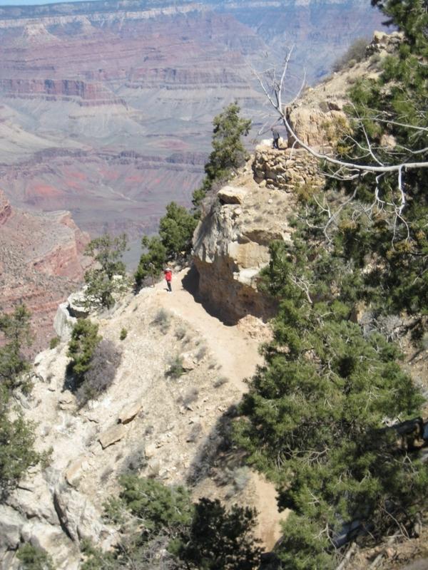 <p>Difficult&eacute;: 4.5 (avanc&eacute;)<br />Distance: 12 km aller seulement<br />Dur&eacute;e: 4-6h aller<br />&Eacute;l&eacute;vation: -1338m<br /><br />Situ&eacute; sur le versant sud, Bright Angel Trail est consid&eacute;r&eacute; comme le sentier le plus important du Grand Canyon. Bien entretenu avec de nombreux endroits o&ugrave; boire de l&#39;eau et se reposer, il est indubitablement le sentier le plus s&eacute;curitaire du parc national. Il y a un poste de garde-forestier situ&eacute; au milieu du sentier (Indian Garden) et un au bas du Canyon (Bright Angel Campground). Les visiteurs qui marchent pour la premi&egrave;re fois au Grand Canyon utilisent souvent ce sentier conjointement avec le South Kaibab Trail. Surtout l&#39;&eacute;t&eacute;, il est cens&eacute; monter via le Bright Angel Trail &agrave; cause de l&#39;eau potable, l&#39;ombre, les t&eacute;l&eacute;phones d&#39;urgence et la pr&eacute;sence de gardes forestiers.<br /><br />Histoire: Bright Angel Trail est proche d&#39;une route utilis&eacute;e pendant un mill&eacute;naire pendant les nombreux groupes am&eacute;rindiens qui habitaient au Grand Canyon. Des pionniers de l&#39;ouest au Canyon ont d&#39;abord construit un sentier en 1891 pour atteindre les concessions mini&egrave;res &eacute;tablies en bas du sommet &agrave; Indian Garden. Reconnaissant que la vraie valeur des concessions se mesurerait avec les visites des touristes, ces pionniers ont imm&eacute;diatement enregistr&eacute; leur sentier en tant que route &agrave; p&eacute;age et ont &eacute;tendu le sentier jusqu&#39;&agrave; la rivi&egrave;re. Les concessions mini&egrave;res et l&#39;utilisation du sentier comme route &agrave; p&eacute;age a suscit&eacute; beaucoup de controverse, d&#39;abord dans des batailles juridiques avec les compagnies ferroviaires qui voulaient contr&ocirc;ler le tourisme, et plus tard avec le gouvernement f&eacute;d&eacute;ral. Le sentier a &eacute;t&eacute; remis entre les mains du Service du parc nat