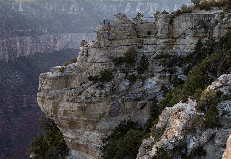 <p>Difficult&eacute;: 0.5 (facile)<br />Distance: 1,4 km<br />Dur&eacute;e: 30 min<br />&Eacute;l&eacute;vation: -15m<br /><br />Situ&eacute; sur le versant nord, ce court sentier m&egrave;ne vers le sud &agrave; partir du Grand Canyon Lodge ou &agrave; l&#39;entr&eacute;e du sentier Bright Angel Point. Il suit la cr&ecirc;te qui s&eacute;pare le Transept (ouest) de Roaring Springs Canyon. Le chemin est pav&eacute; et accessible aux gens en fauteuil roulant. Il se termine &agrave; 1 kilom&egrave;tre de l&#39;h&eacute;bergement &agrave; Bright Angel Point avec une vue spectaculaire sur Bright Angel Canyon.<br /><br />Randonn&eacute;e: Le grand canyon affluent &agrave; l&#39;est (&agrave; votre gauche) est Roaring Springs Canyon, un affluent de Bright Angel Creek. La source d&#39;eau principale de ces deux drainages et Roaring Springs. Les eaux de pluie et de fonte coulent dans le Kaibab Plateau du North Rim, migrant graduellement vers le sud en raison l&#39;inclinaison vers le sud du plateau. L&#39;eau &eacute;merge de fa&ccedil;on spectaculaire d&#39;ouvertures de la taille de cavernes dans le mur du canyon.<br /><br />L&#39;eau de Roaring Springs est pomp&eacute;e jusqu&#39;au North Rim depuis 1928 et approvisionne les deux sommets. Des lignes &eacute;lectriques que l&#39;on voit plus bas fournissent du courant pour pomper l&#39;eau. Lors de jours tranquilles, vous pouvez entendre Roaring Springs couler &agrave; flots d&#39;une falaise &agrave; 950 m&egrave;tres plus bas.<br /><br />La courte promenade jusqu&#39;&agrave; Bright Angel Point dramatise l&#39;effet du Grand Canyon sur les environs. Une transition de la for&ecirc;t verte du plateau &agrave; une for&ecirc;t rachitique de Pinus edulis et de gen&eacute;vrier sur la pente survient subitement. Sur les terres plates vous devriez marches des centaines de kilom&egrave;tres pour ressentir la variation, mais en raison de la topographie du canyon, la transition est comprim&eacute;e en quelques centaines de m&egrav