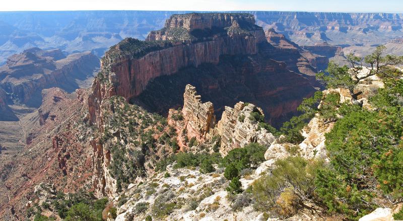 <p>Difficult&eacute;: 1.5 (facile)<br />Distance: 1 km<br />Dur&eacute;e: 30 minutes<br />&Eacute;l&eacute;vation: 3 m<br /><br />Situ&eacute; sur le versant nord, ce sentier facile est sur un chemin plat et pav&eacute;, offrant des vues sur le canyon, Angels Window et le fleuve Colorado. Des rep&egrave;res sur le chemin interpr&egrave;tent l&#39;histoire naturelle de la r&eacute;gion. Le d&eacute;but est au sud-est de l&#39;aire de stationnement de Cape Royal. Certains disent que c&#39;est la meilleure vue du Grand Canyon. &Agrave; vous d&#39;en d&eacute;cider. Vous commencez sur un parcours bord&eacute; d&#39;arbres: vous verrez une flore vari&eacute;e, notamment un gen&eacute;vrier de l&#39;Utah.<br /><br />Il y a quelques endroits au nord du chemin o&ugrave; vous pouvez vous &eacute;loigner et regarder &agrave; travers le sommet et vers Angel&#39;s Window (une sorte d&#39;ouverture carr&eacute;e dans le gr&egrave;s Kaibab). Si vous regardez du bon endroit, vous pourrez observer le fleuve Colorado. L&#39;arche naturelle a &eacute;t&eacute; caus&eacute;e par l&#39;eau qui coulait par les craques, puis entre les lits de rochers, finissant par &eacute;roder le roc.<br /><br />Vous pouvez choisir d&#39;aller au nord au sommet d&#39;Angel&#39;s Window ou continuer jusqu&#39;&agrave; la pointe de Cape Royal, le point de vue le plus au sud au North Rim. Du sommet, vous avez une vue de 360 degr&eacute;s et la premi&egrave;re chose que vous verrez est Wotan&#39;s Throne, un grand plateau. &Agrave; votre gauche vous verrez Vishnu Temple et Freya Castle. Si vous regardez vers le South Rim, vous pourrez apercevoir la tour de guet &agrave; Desert View ainsi que Humphreys Peak &agrave; 3850m pr&egrave;s de Flagstaff. Il y a un panneau d&#39;interpr&eacute;tation qui indique certains monuments. &Agrave; votre retour, vous allez vous rendre &agrave; une passerelle de 135 m&egrave;tres sur la p&eacute;ninsule au sommet du rocher qui supporte Angel&#39;s Window.<br /><br />Photo: 