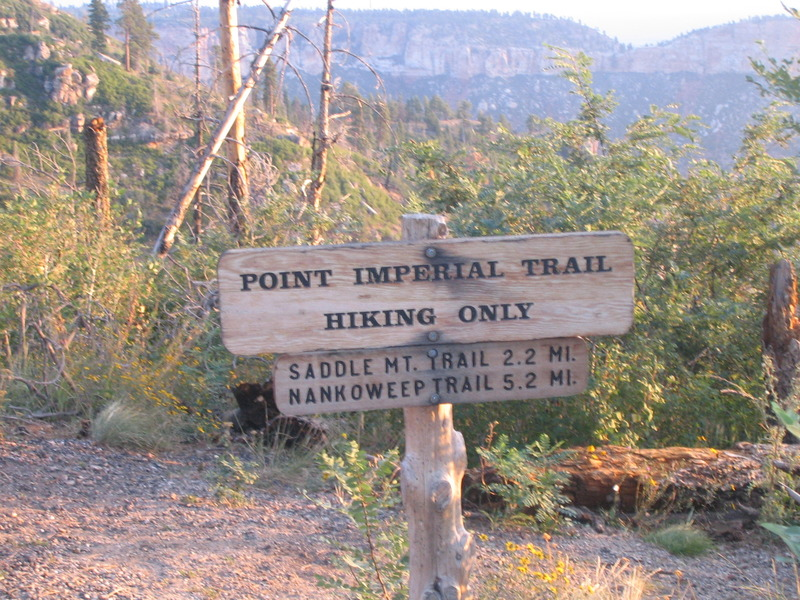 <p>Difficult&eacute;: 1.5 (facile)<br />Distance: 7 km<br />Dur&eacute;e: 2h<br />&Eacute;l&eacute;vation: 6 m&egrave;tres<br /><br />Situ&eacute; sur le versant nord, ce sentier facile passe par des endroits br&ucirc;l&eacute;s par le feu de 2000 et se termine aux limites nord du parc. &Agrave; partir de l&agrave;, des connexions sont possibles au Nankoweap Trail et les routes du service forestier. Regardez le soleil se lever de Point Imperial et &eacute;tirez vos jambes pendant ce sentier court mais gratifiant.<br /><br />Le sentier d&eacute;bute au stationnement de Point Imperial et se rend au nord; quelques cartes, comme le Falcon Guide, le voient comme une extension du Ken Patrick Trail. Vous entrez dans une r&eacute;gion br&ucirc;l&eacute;e, maintenant domin&eacute;e par les immenses squelettes des pins et des trembles. Apr&egrave;s un kilom&egrave;tre, le sentier se rend bri&egrave;vement au sommet et offre quelques points de vue informels de Marble Canyon, avant de retourner dans le plateau.<br /><br />D&#39;ici, des prairies remplies de fleurs sauvages alternent avec d&#39;&eacute;pais peuplements de jeunes trembles, et les pique-bois cognent dans les pins. Les oiseaux sont nombreux, et soyez &agrave; l&#39;aff&ucirc;t de cerfs-mulets et d&#39;&eacute;cureuils. Cette randonn&eacute;e est excellente pour les botanistes ou si vous &ecirc;tes int&eacute;ress&eacute;s par l&#39;&eacute;tablissement d&#39;un &eacute;cosyst&egrave;me suite &agrave; un feu de for&ecirc;t.<br /><br />Ce sentier se parcourt facilement, est bien entretenu et est surtout plat. Il n&#39;y a pas de sommet ou d&#39;autre but ici, alors revenez sur vos pas lorsque vous &ecirc;tes pr&ecirc;ts &agrave; partir.<br /><br />Photo: Nan</p>