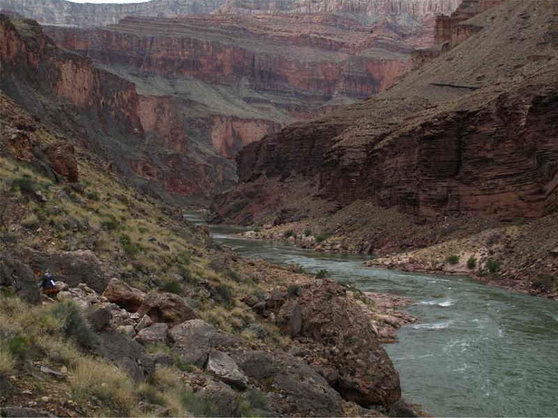 <p>Difficult&eacute;: 4.5 (avanc&eacute;)<br />Distance: 12,5 km aller seulement<br />Dur&eacute;e: 4h aller seulement<br />&Eacute;l&eacute;vation: 1340m<br /><br />Ce sentier est situ&eacute; sur le versant sud. William W. Bass a &eacute;t&eacute; le plus remarquable des pionniers qui sont venus au sommet du Grand Canyon dans les ann&eacute;es 1880 pour tailler une vie et un style de vie &agrave; partir d&#39;&eacute;tendues sauvages. La contribution de cet homme dans l&#39;histoire du canyon est difficile &agrave; mesurer. Une liste de ses accomplissements durant plus de 40 ans de vie sur le sommet remplirait un livre. Parmi le plus notable, il y a la construction de plus de 80km de sentiers dans le canyon; la plupart d&#39;entre eux sont toujours praticables. Le South Bass Trail a &eacute;t&eacute; la fondation de ce vaste syst&egrave;me de chemins et aujourd&#39;hui il offre aux routards modernes une porte ouverte sur une partie fascinante du Grand Canyon, impr&eacute;gn&eacute;e dans l&#39;histoire que Bill Bass a v&eacute;cue.<br /><br />Les randonneurs qui arrivent &agrave; la plage au bas de South Bass Trail ne peuvent s&#39;emp&ecirc;cher de remarquer un vieux bateau encha&icirc;n&eacute; aux rochers au-dessus de la ligne des hautes eaux. Abandonn&eacute; par Russell et Tadge en 1915, le Ross Wheeler a &eacute;t&eacute; construit par Bert Loper, un grand homme des coureurs du Fleuve Colorado, et a &eacute;t&eacute; nomm&eacute; en l&#39;honneur d&#39;un ami assassin&eacute;. Loper a connu une mort romantique en 1949 durant une excursion sur la rivi&egrave;re du Grand Canyon, souffrant d&#39;une crise cardiaque &agrave; 79 ans. Son corps a &eacute;t&eacute; retrouv&eacute; en 1975, 26 ans apr&egrave;s sa mort.<br /><br />Il est recommand&eacute; d&#39;arriver en soir&eacute;e et de camper sur le sommet. Le chemin jusqu&#39;&agrave; l&#39;entr&eacute;e est en terre pendant environ 50 km. Il faut un 4x4. Par temps sec, ce n&#39;est pas obligatoire, mais s&#39