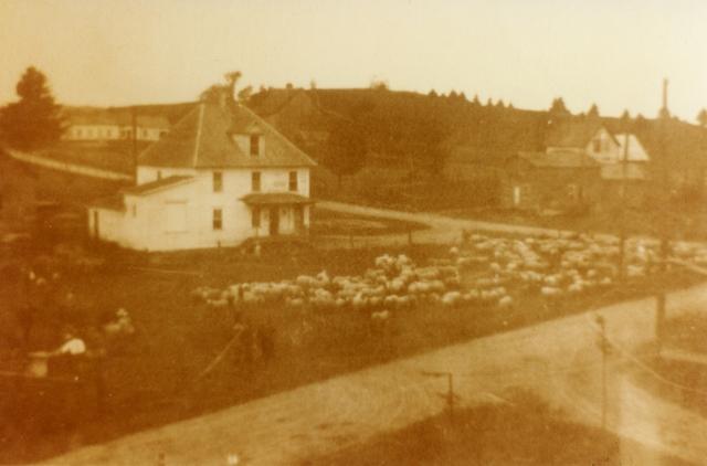 <p>Le petit garage blanc que vous voyez &eacute;tait auparavant la beurrerie du village.</p>