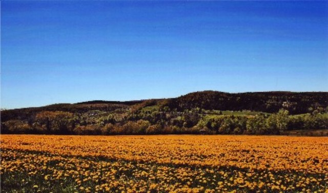<p>&Agrave; ce point, vous pouvez admirer une vue magnifique des environs. Juste en face, &agrave; l&#39;horizon, vous apercevrez le mont de Colebrook, au New-Hampshire. &Agrave; votre droite, c&#39;est le massif du mont Hereford et tout en bas, le village de Saint-Venant.</p>