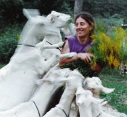 <p>La fromagerie Domaine de Courval produit du fromage de ch&egrave;vre certifi&eacute; bio par &Eacute;cocert, un organisme de contr&ocirc;le fond&eacute; en France en 1991.<br /><br />Raynald H&eacute;bert est Qu&eacute;b&eacute;cois et Laurie Goodhart est am&eacute;ricaine. Le couple poss&eacute;dait une micro fromagerie l&#39;&Eacute;tat de New York et fabriquait du fromage depuis 18 ans. Ils sont au Qu&eacute;bec depuis 2005.</p>
